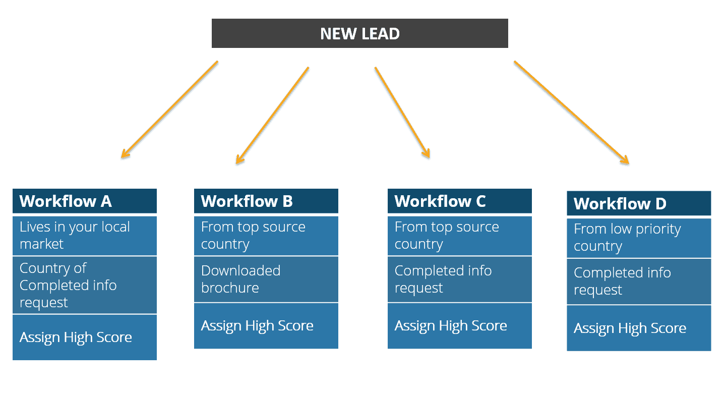 student lead workflow