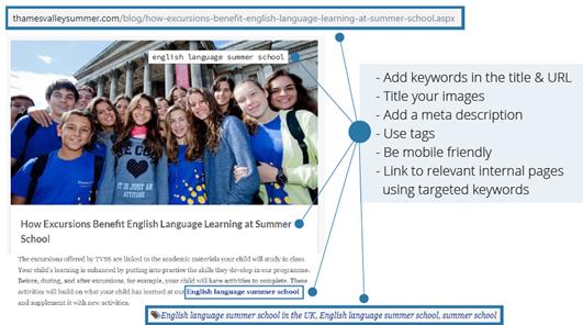 SEO for language schools