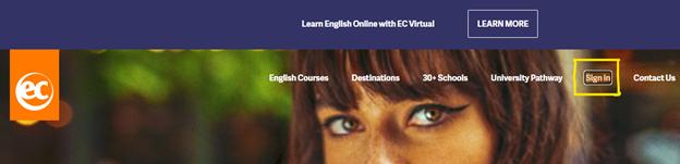 education website design acessibility